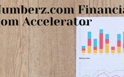 RealNumberz Financial Freedom Accelerator Lesson 2: The 6 Basic Items Real Estate Investors Need to Know in Order to Get the Truth About Your Returns